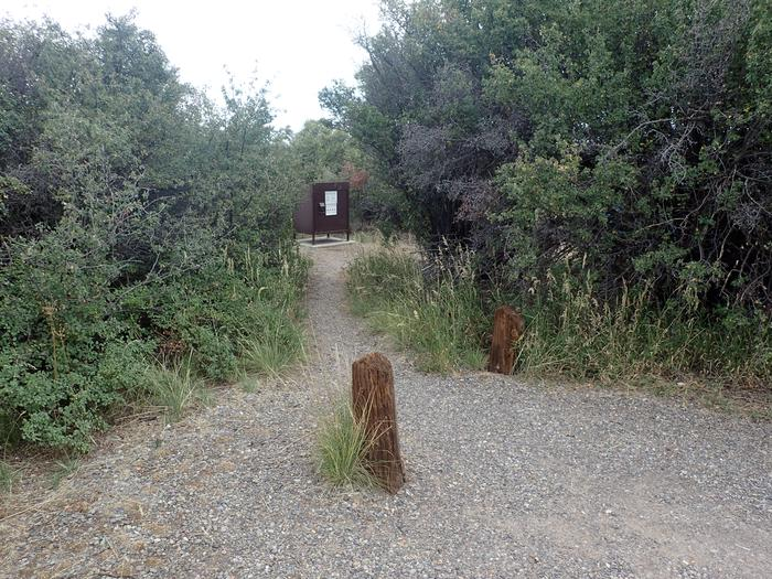 View of short path leading to Campsite A-014