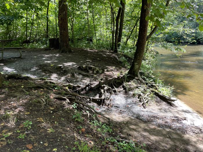 A photo of Site A09 of Loop A at ABRAM'S CREEK CAMPGROUND with Waterfront