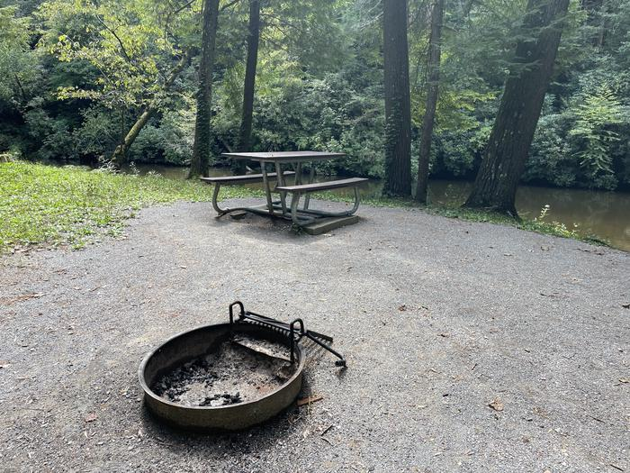 A photo of Site A03 of Loop A at ABRAM'S CREEK CAMPGROUND with Picnic Table, Fire Pit, Shade, Waterfront