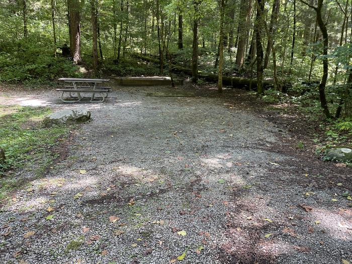 A photo of Site A14 of Loop A at ABRAM'S CREEK CAMPGROUND with Picnic Table, Fire Pit, Tent Pad