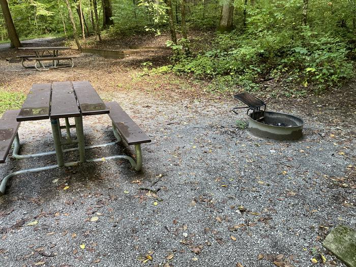 A photo of Site A14 of Loop A at ABRAM'S CREEK CAMPGROUND with Picnic Table, Fire Pit