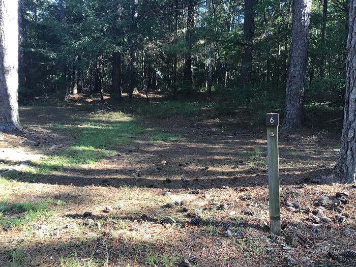 A photo of Site Site 06 of Loop Rocky Branch at Rocky Branch Seasonal Campground (SC) with Shade