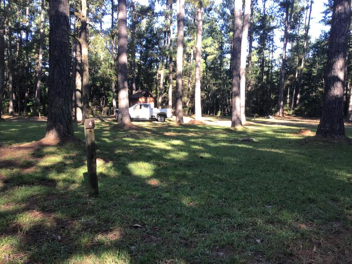 A photo of Site Site 04 of Loop Rocky Branch at Rocky Branch Seasonal Campground (SC) with Shade