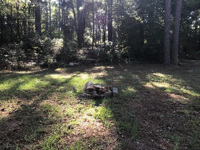 A photo of Site Site 05 of Loop Rocky Branch at Rocky Branch Seasonal Campground (SC) with Fire Pit, Shade
