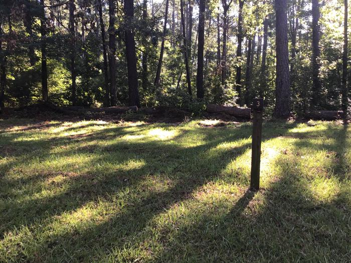 A photo of Site Site 03 of Loop Rocky Branch at Rocky Branch Seasonal Campground (SC) with Shade