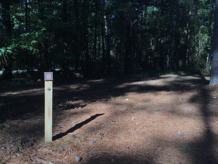 A photo of Site Site 10 of Loop Rocky Branch at Rocky Branch Seasonal Campground (SC) with Shade