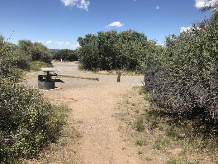 View of Campsite A-023 from potential tent space