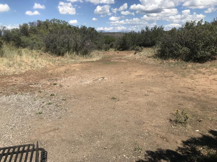 View of potential tent space within Campsite A-024