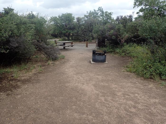 View of Campsite A-025 from potential tent space