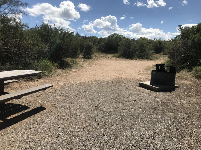 View of large potential tent space within Campsite A-026