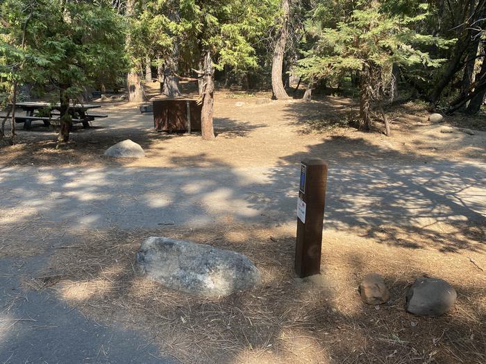 A photo of Site 039 of Loop WILLIAM KENT CAMPGROUND at WILLIAM KENT CAMPGROUND with Picnic Table, Fire Pit, Food Storage