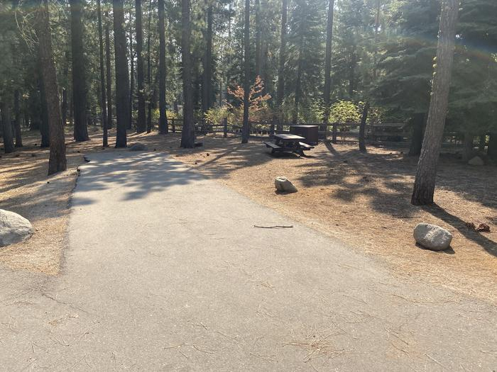 A photo of Site 020 of Loop AREA WILLIAM KENT CAMPGROUND at WILLIAM KENT CAMPGROUND with Picnic Table, Fire Pit, Food Storage