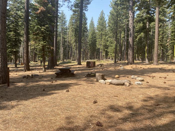 A photo of Site 009 of Loop AREA KASPIAN CAMPGROUND at KASPIAN CAMPGROUND with Picnic Table, Fire Pit, Food Storage