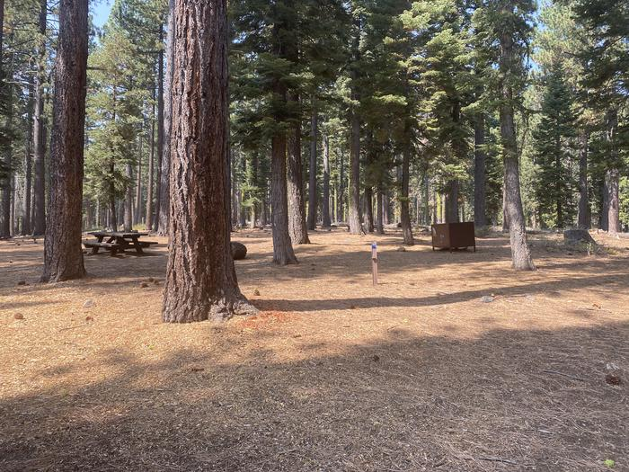 A photo of Site 006 of Loop AREA KASPIAN CAMPGROUND at KASPIAN CAMPGROUND with Picnic Table, Fire Pit, Food Storage