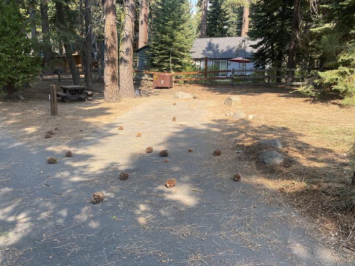 A photo of Site 051 of Loop WILLIAM KENT CAMPGROUND at WILLIAM KENT CAMPGROUND with Picnic Table, Fire Pit, Food Storage