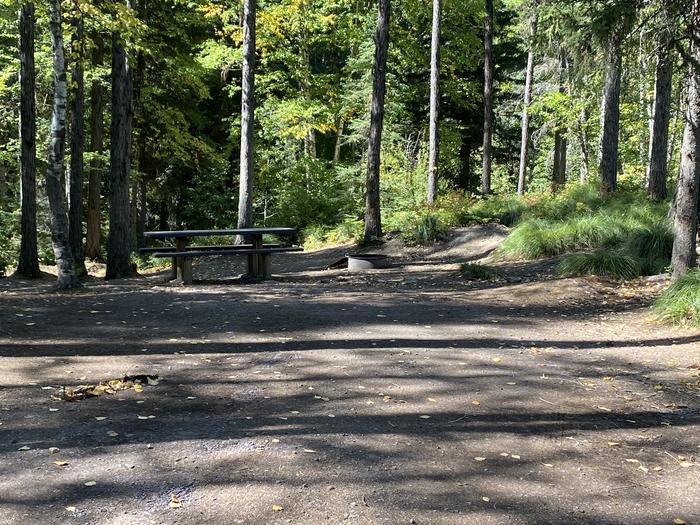 A photo of Site 016 of Loop LID CREEK CAMPGROUND at LID CREEK CAMPGROUND with Picnic Table, Fire Pit