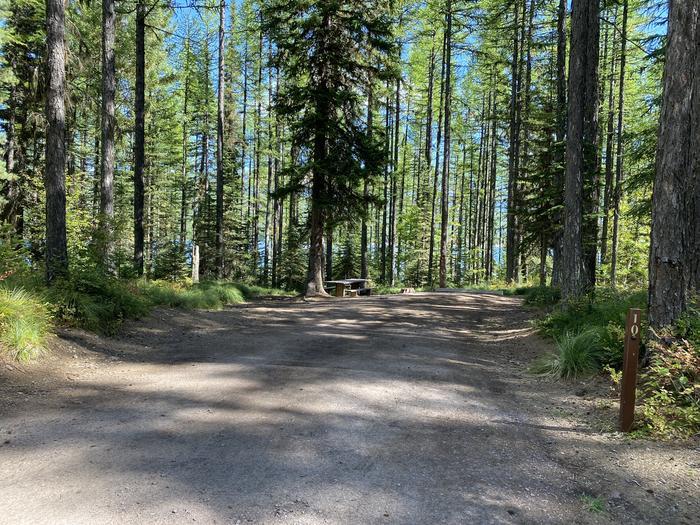 A photo of Site 010 of Loop LID CREEK CAMPGROUND at LID CREEK CAMPGROUND with Picnic Table, Fire Pit