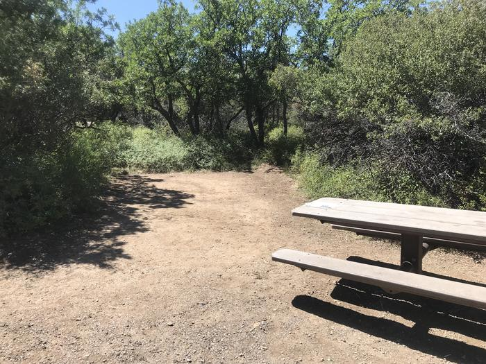 View of potential tent space within Campsite A-034