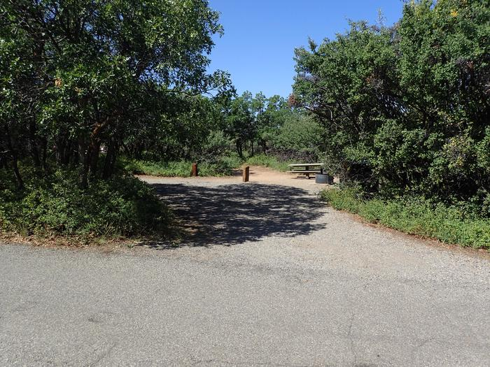View from road of pull-through exit within Campsite A-034