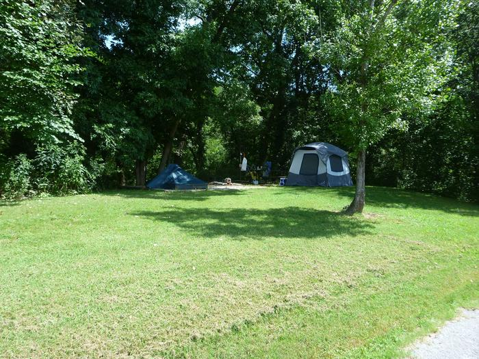 Tyler Bend Main Loop #12Site #12, is a drive through site with a short walk to picnic table and fire ring. Tent pad is 15' x 15'.
