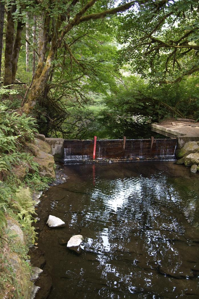 Whittaker Creek DamDam at Whittaker Creek.