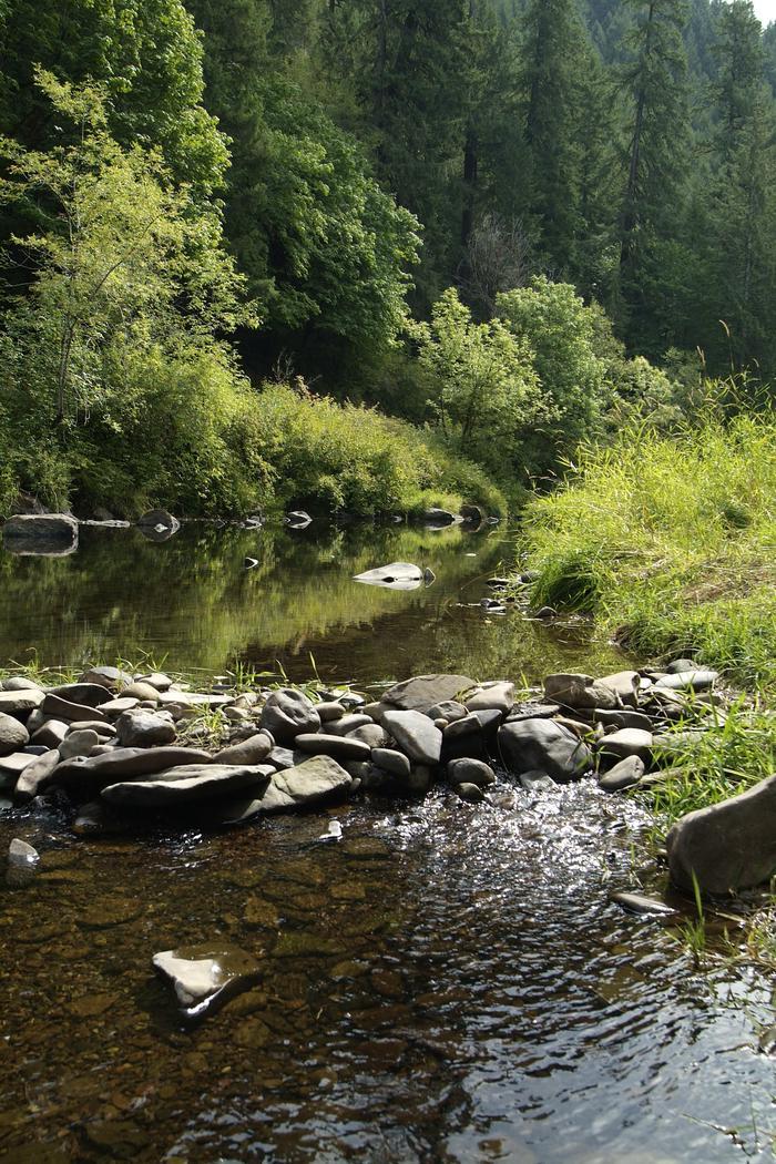 Siuslaw River 2Siuslaw River 2