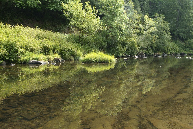 Siuslaw River 3