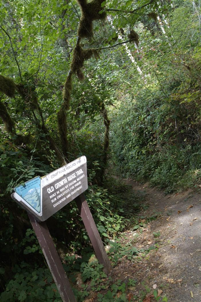 Old Growth Trailhead in Whittaker Campground. Old Growth Trailhead.