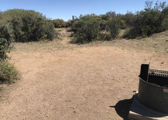 View of large potential tent space within Campsite A-011