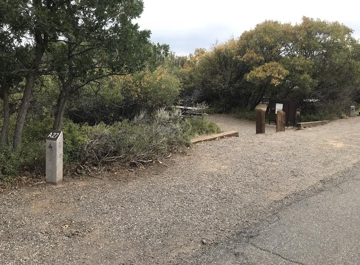 Drive-up view of Campsite A-027