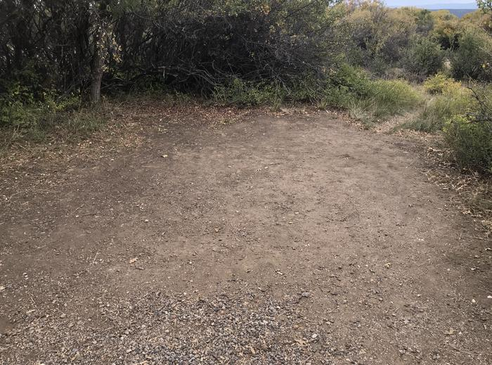 View of small potential tent space within Campsite A-027