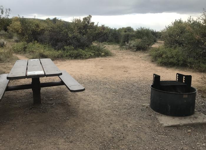 View of large potential tent space within Campsite A-028