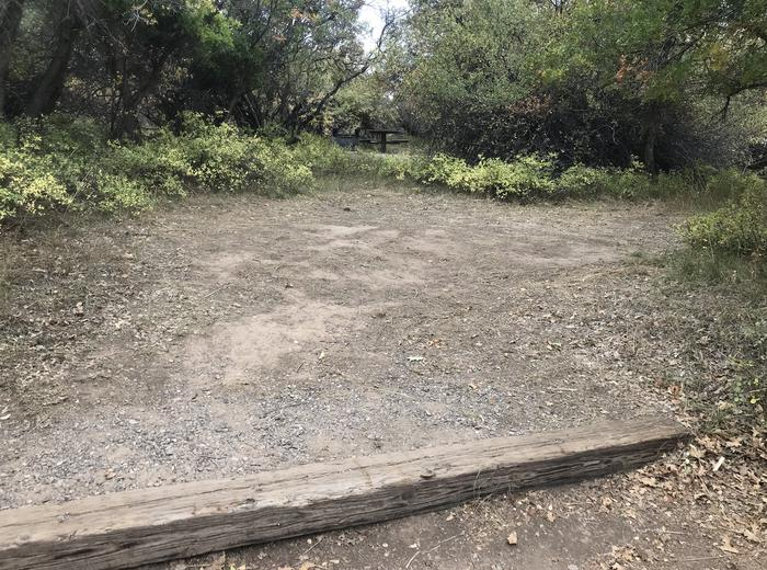 View of larger potential tent space within Campsite A-032