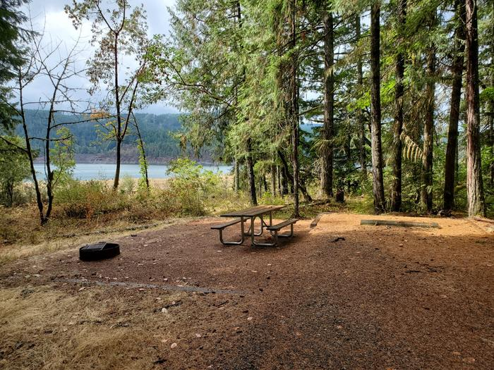 Site 1 picnic table and fire ring