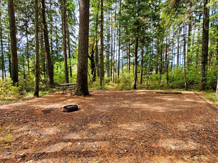 site 2 picnic table and fire ring