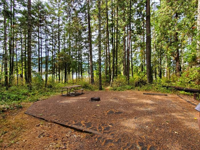 site 3 picnic table and fire ring