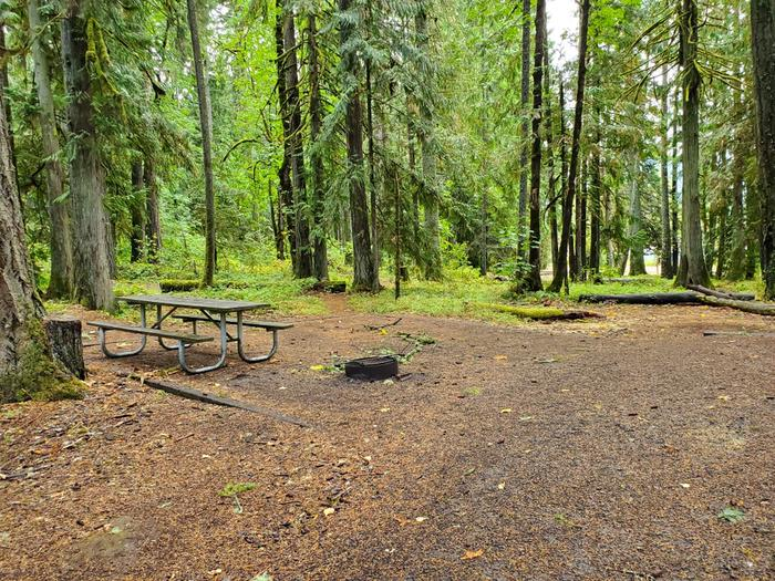 site 4 picnic table and fire ring