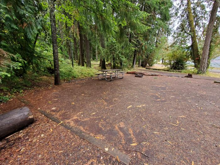 site 9 picnic table and fire ring