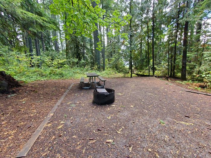 site 15 picnic table and fire ring