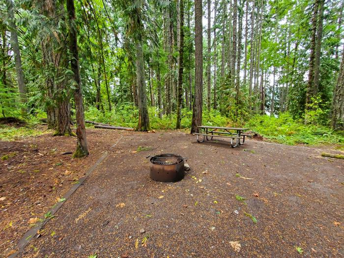 site 17 picnic table and fire ring
