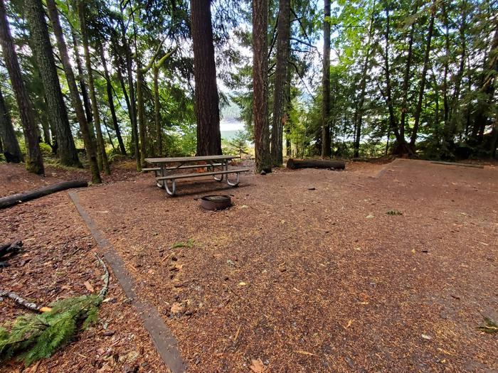 site 19 picnic table and fire ring