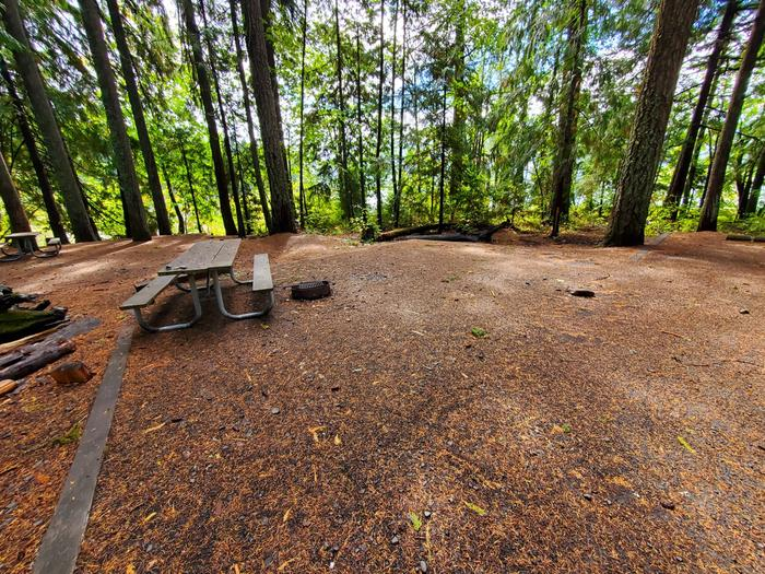 site 21 picnic table and fire ring