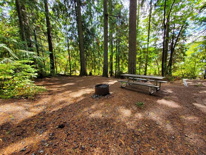 site 23 picnic table and fire ring