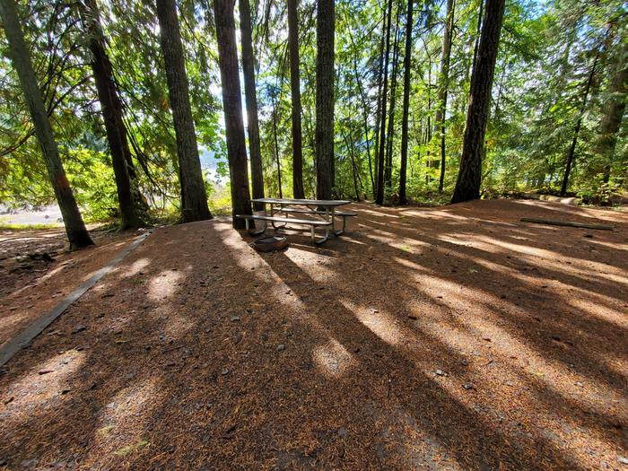 site 22 picnic table and fire ring