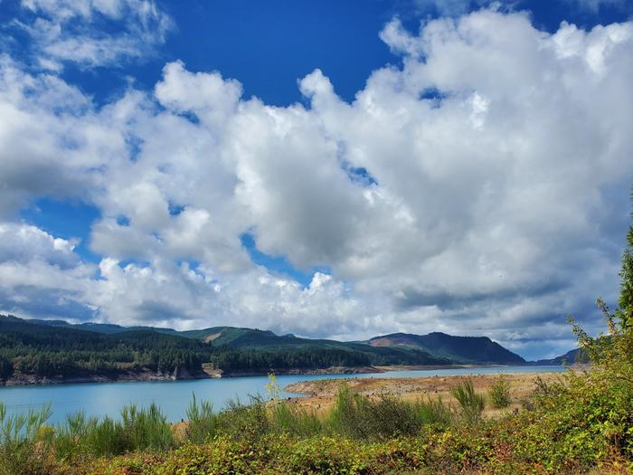 View of Lookout Point Lake from Ivan Oakes Campground