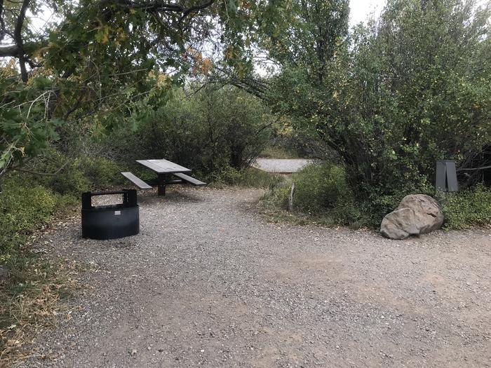 View of Campsite B-008 from parking area
