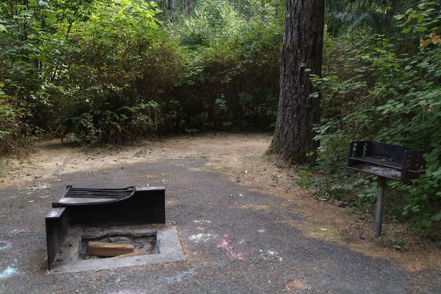 Camp site 3 fire ring, stand up grill, accessibility trail, and large tent pad.