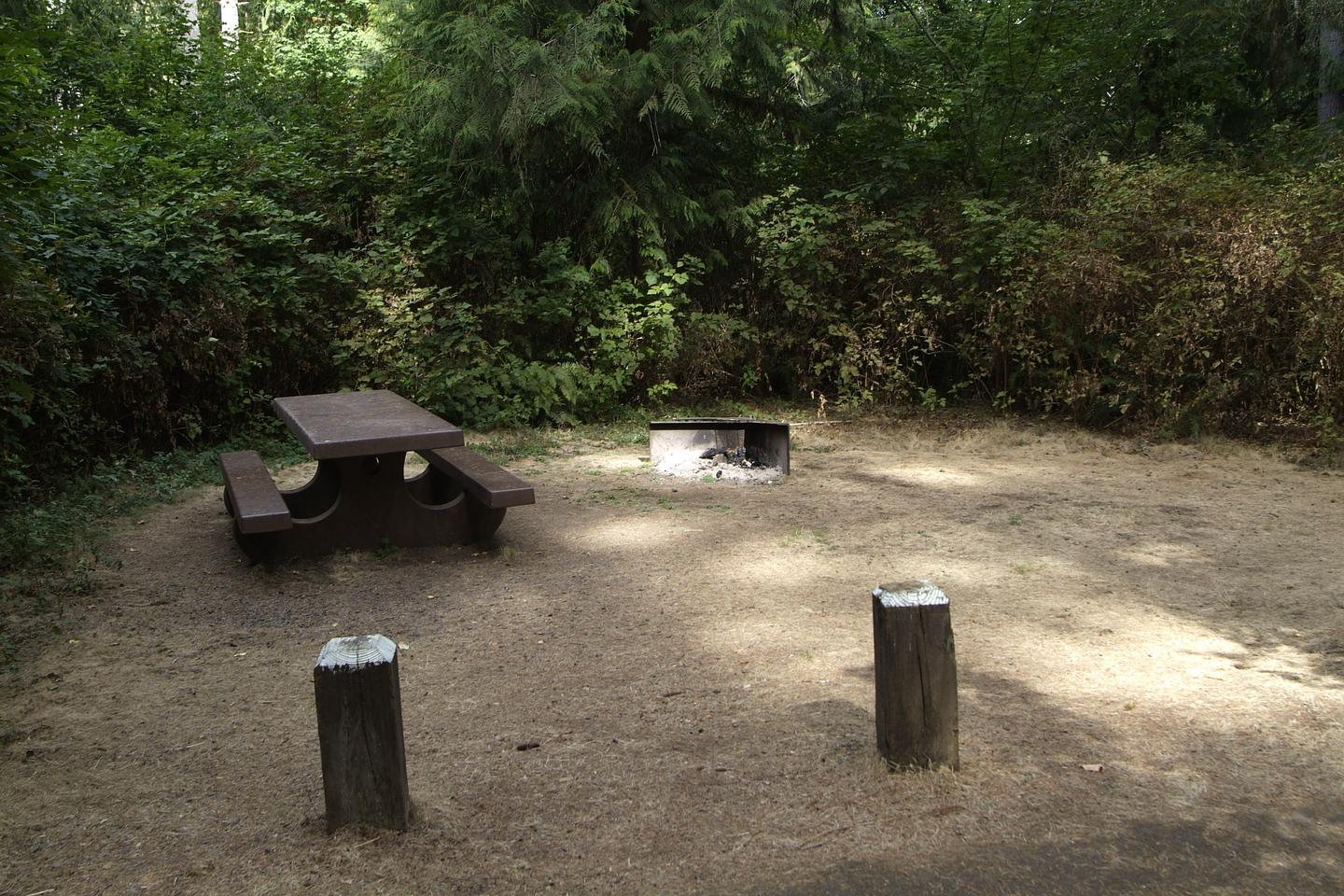 Camp site 4 has a table and fire ring. Camp site 4 table and fire ring.