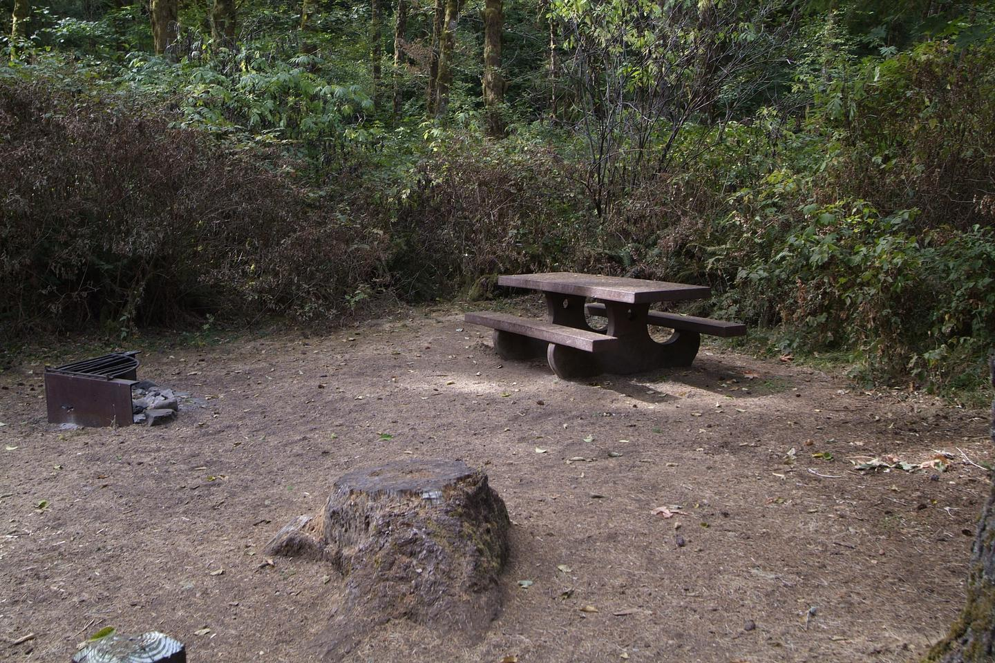 Table and fire ring for camp site 5. Camp site 5 table and fire ring.