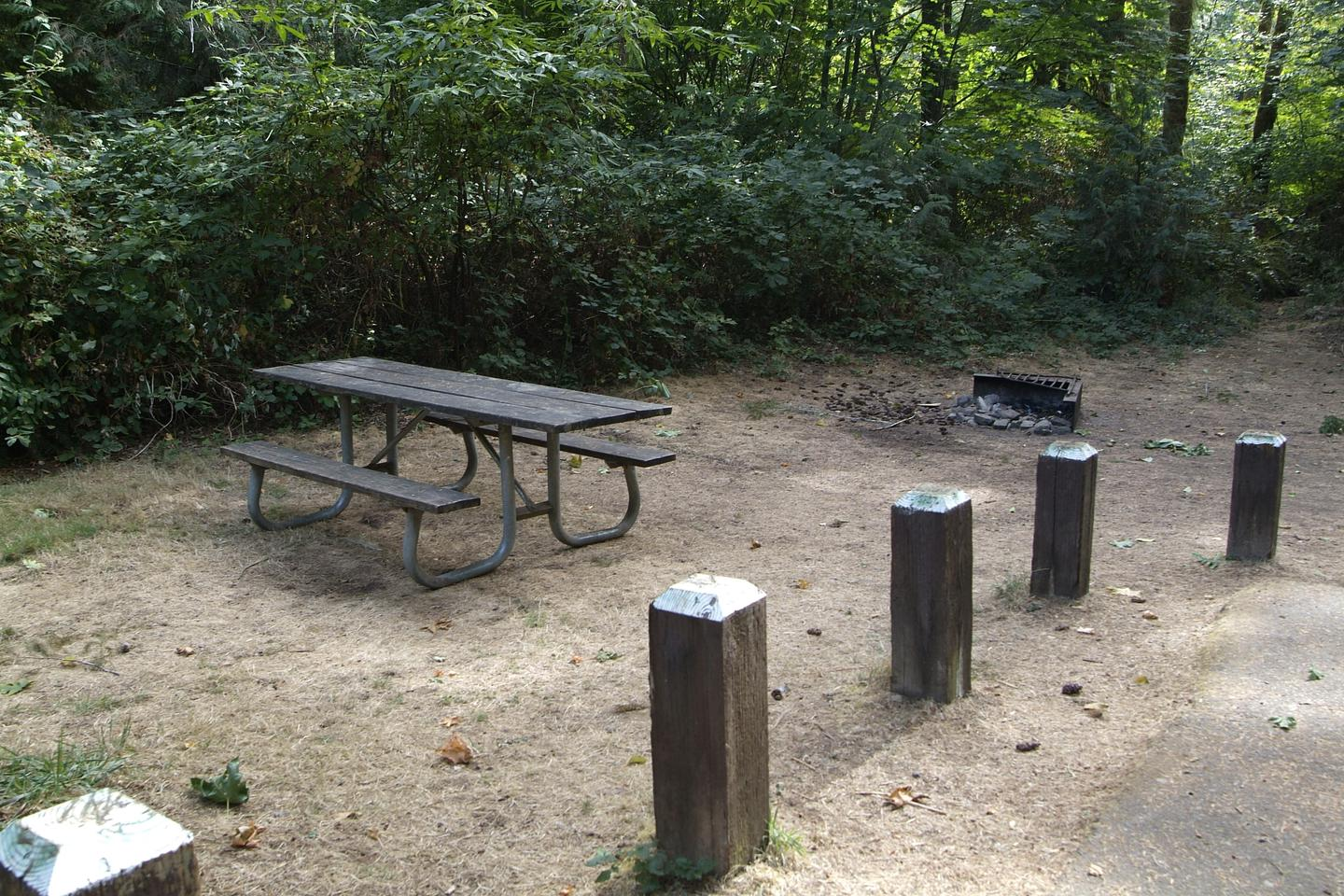 Table and fire ring for camp site 7. Camp site 7 table and fire ring.
